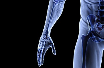 Anatomy & Physiology D20001 - Level 5
